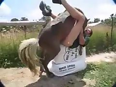 Man really fucked by horse